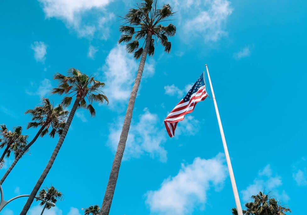 Amercian flag and palm trees